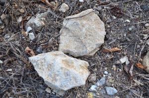 Limestone in Volnay Taille Pieds Premier Cru Vineyard