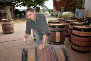 Pinot Bob painting barrels